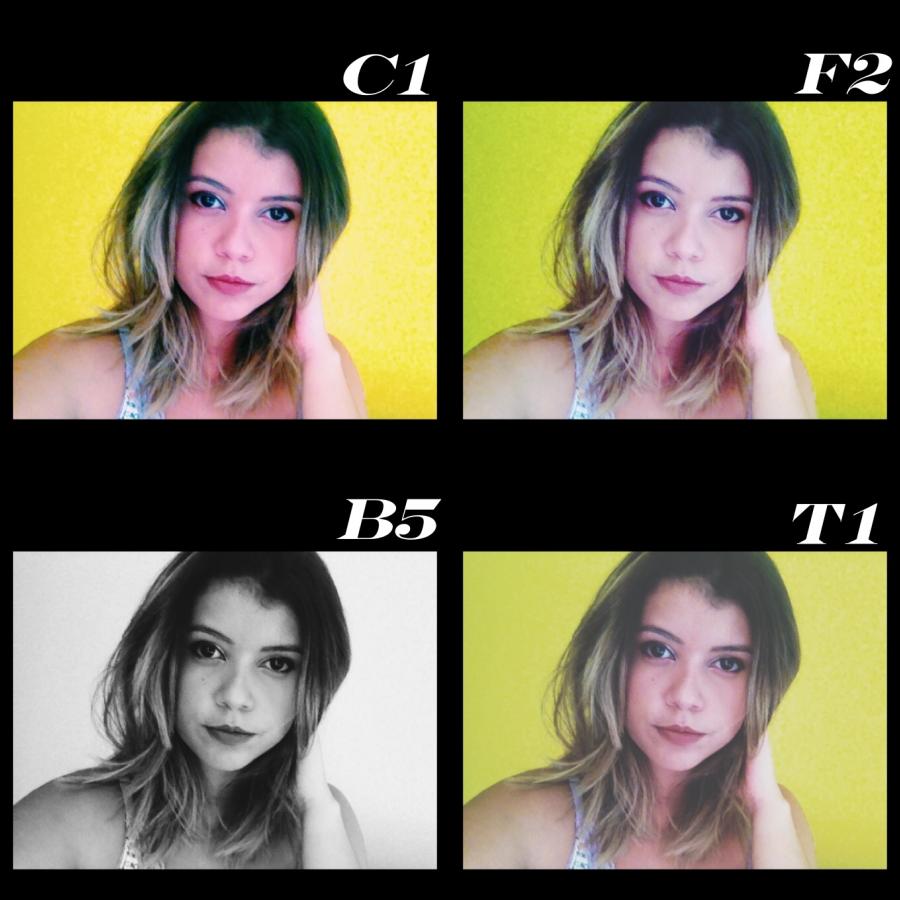 collage selfie dia